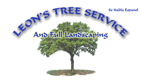 Leon's Tree Service and Full Landscaping